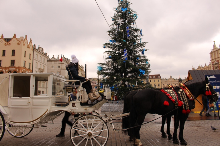 A horse and carriage in Krakow Main Square