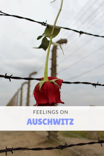 Feelings on Auschwitz Pin